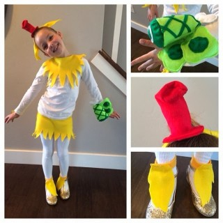 Dr. Seuss's Birthday Celebration – Sam I Am Costume