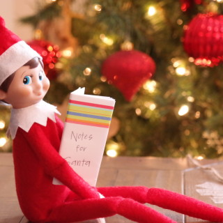 A New Approach to Elf on the Shelf